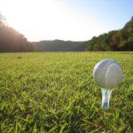 ゴルフのティーの種類を総まとめ!それぞれの特徴とおすすめティーをご紹介!