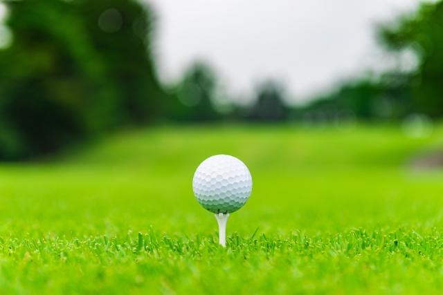 2. ゴルフティーの支柱の種類