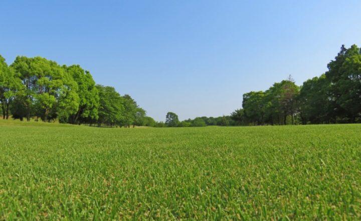 埼玉で初心者向けのおすすめなゴルフ場はココ!絶対行くべき人気コースランキング5選!