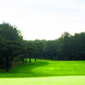 大阪の初心者向けゴルフ場を総まとめ!絶対おすすめな人気コースランキング5選!