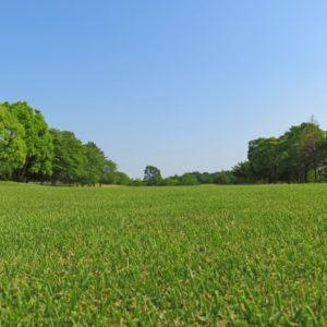 兵庫の安いゴルフ場を総まとめ!絶対におすすめな格安コースの人気ランキング!