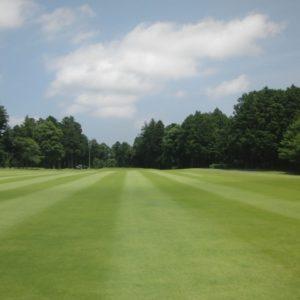 千葉の初心者でも簡単なゴルフ場ランキング!フェアウェイが広いフラットコースを総まとめ!