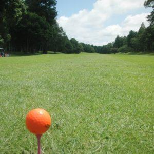 千葉で人気な27ホール制ゴルフ場はココ!1.5R楽しめるおすすめコースランキング5選!