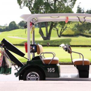 栃木でリモコンカートがあるゴルフ場特集!快適にラウンドできるおすすめコース5選!