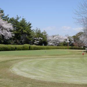栃木で人気のショートコースを総まとめ!おすすめゴルフ場ランキング5選!