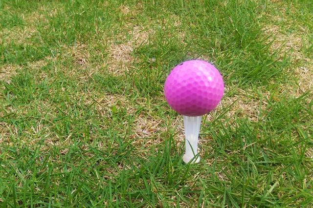 2. 初心者のレディースにおすすめなゴルフボールの人気ランキング!