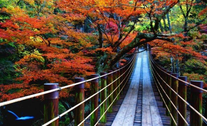 茨城県のゴルフ場のおすすめ人気ランキング!予約が多いベストコース10選!