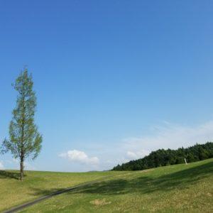 愛知で人気のショートコースを総まとめ!おすすめゴルフ場ランキング5選!